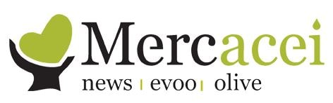 Mercacei: Interview
